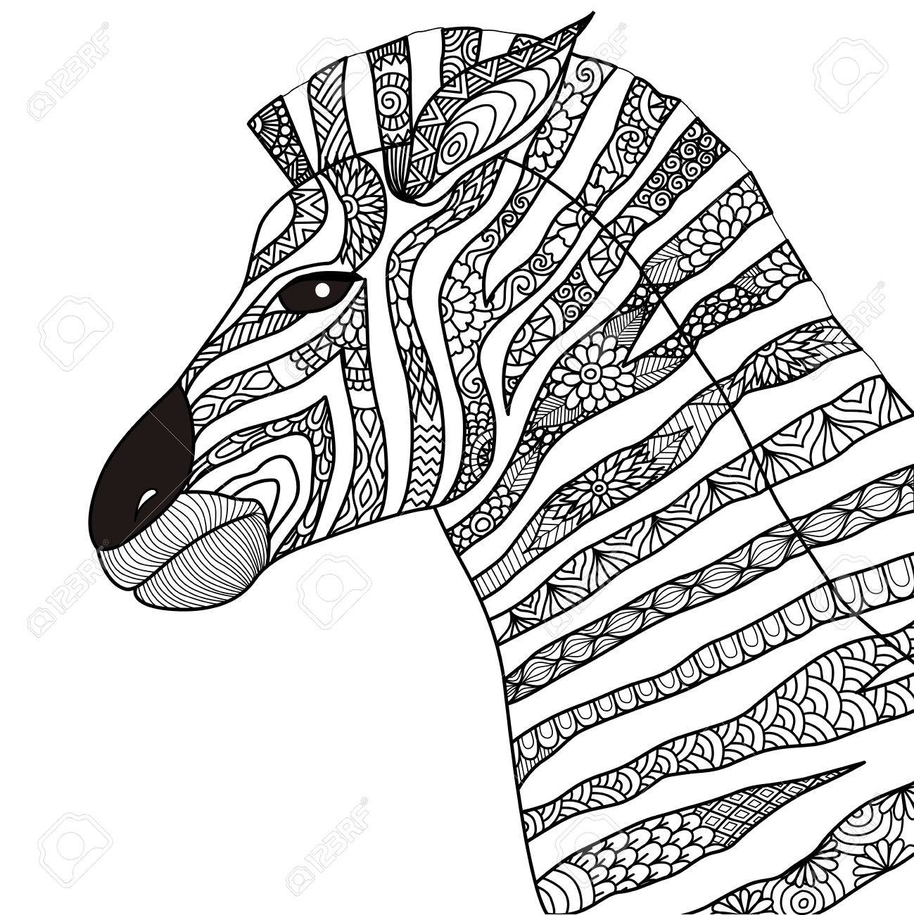 Hand Drawn Zebra Style For Coloring Book Royalty Free Cliparts ...
