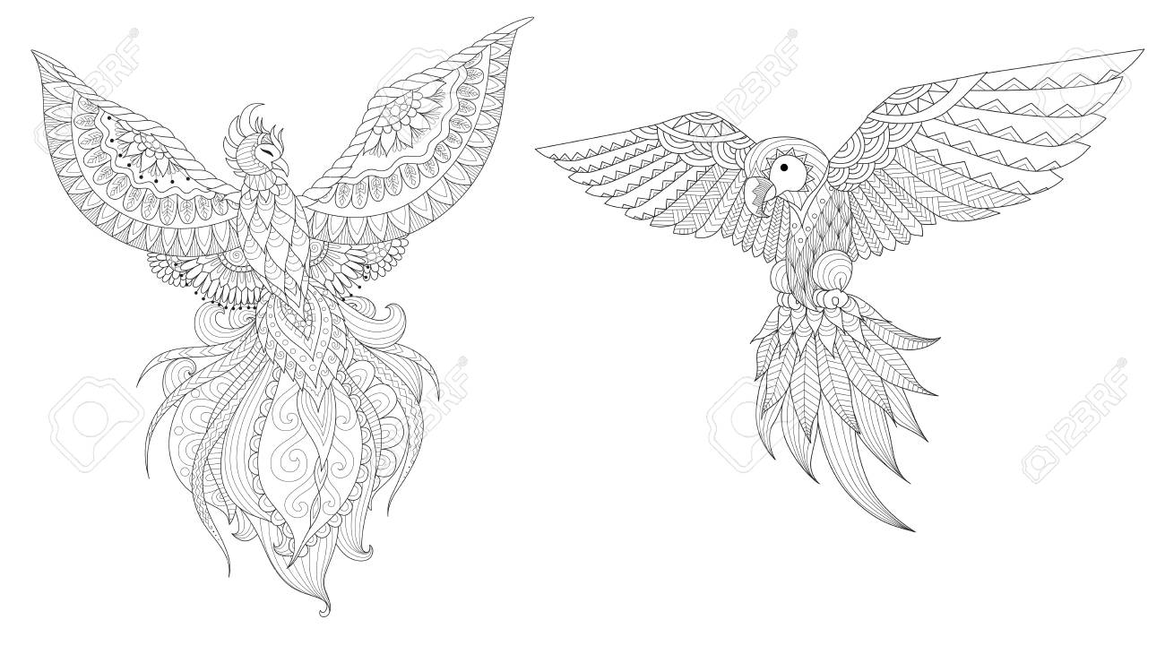 Set Of Phoenix And Parrot Bird For Design Element And Coloring Royalty Free Cliparts Vectors And Stock Illustration Image 112542805