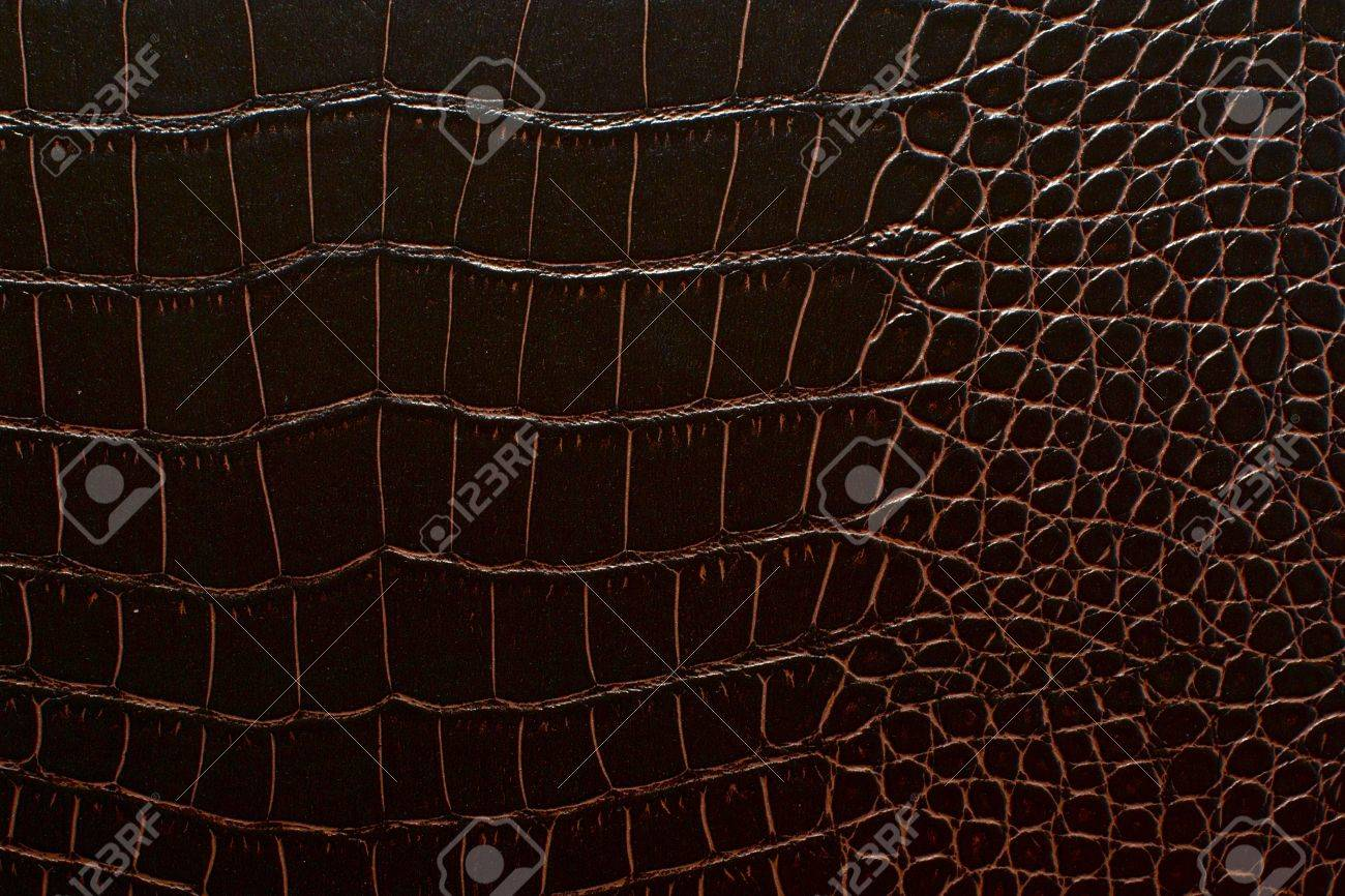 Dark Brown Crocodile Leather Texture Part Of Furniture Stock Photo    14008622