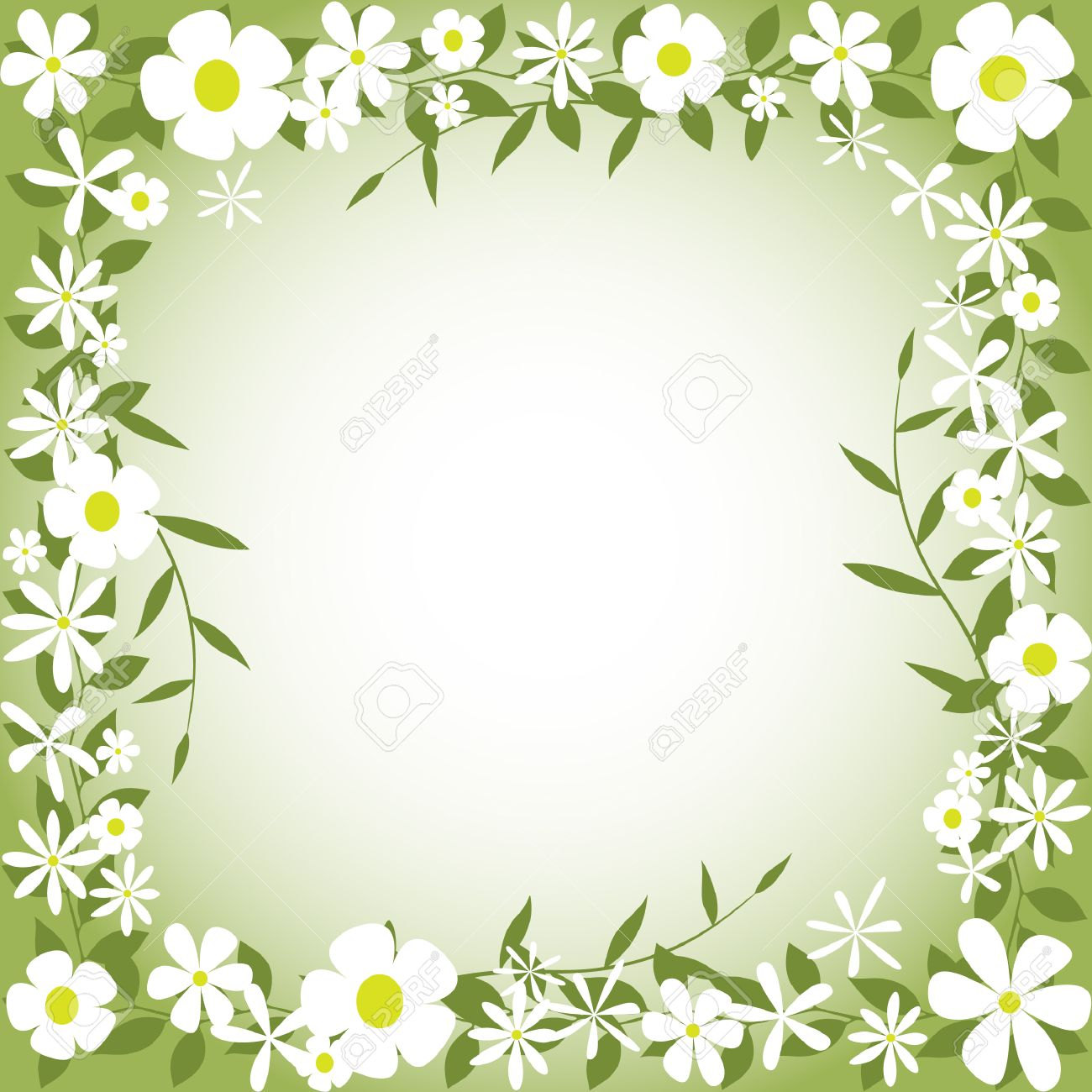 A Floral Border with White Flowers and Leaves Stock Vector - 8290082