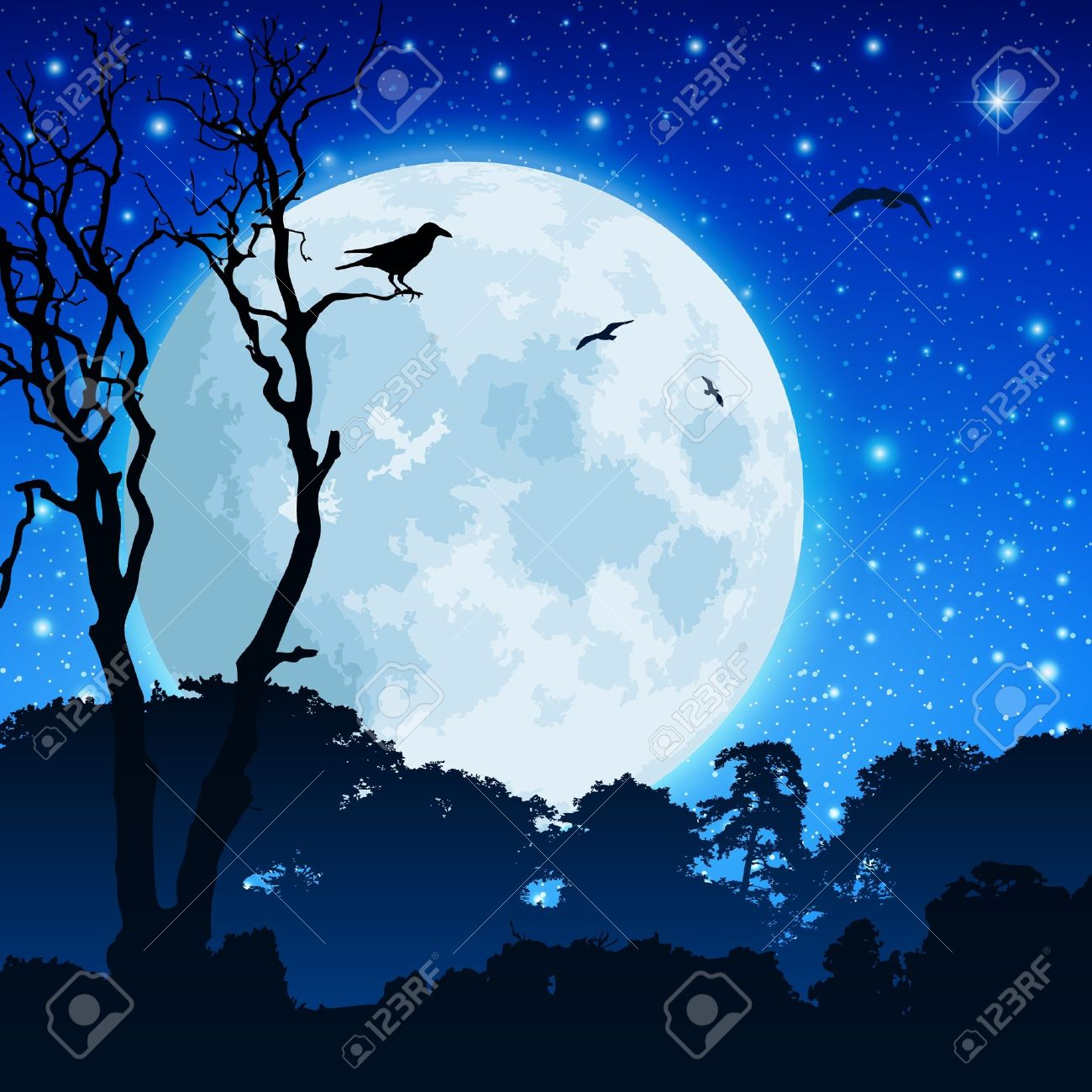 A Forest Landscape with Moon and Night Sky Stock Vector - 8984562