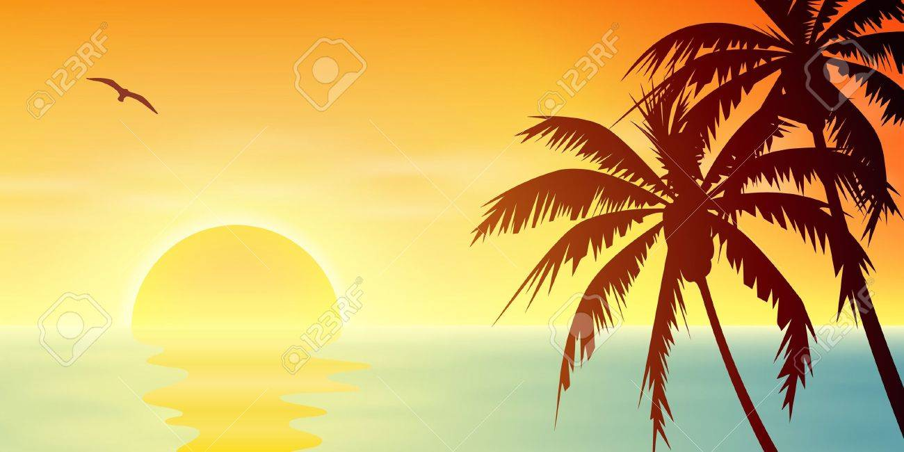 A Tropical Sunset, Sunrise with Palm Trees Stock Vector - 15284097