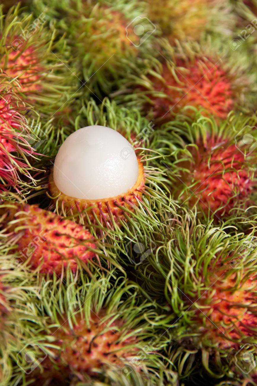 Rambutan vertical, tropical fruits Stock Photo - 13105862