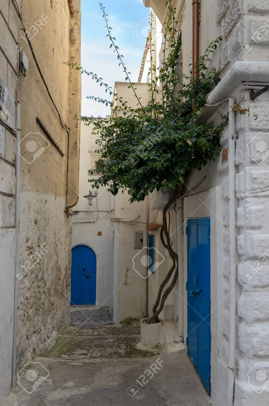 ペスキチ (イタリア、プーリア) 典型的な古い路地、白い家 の写真素材 ...