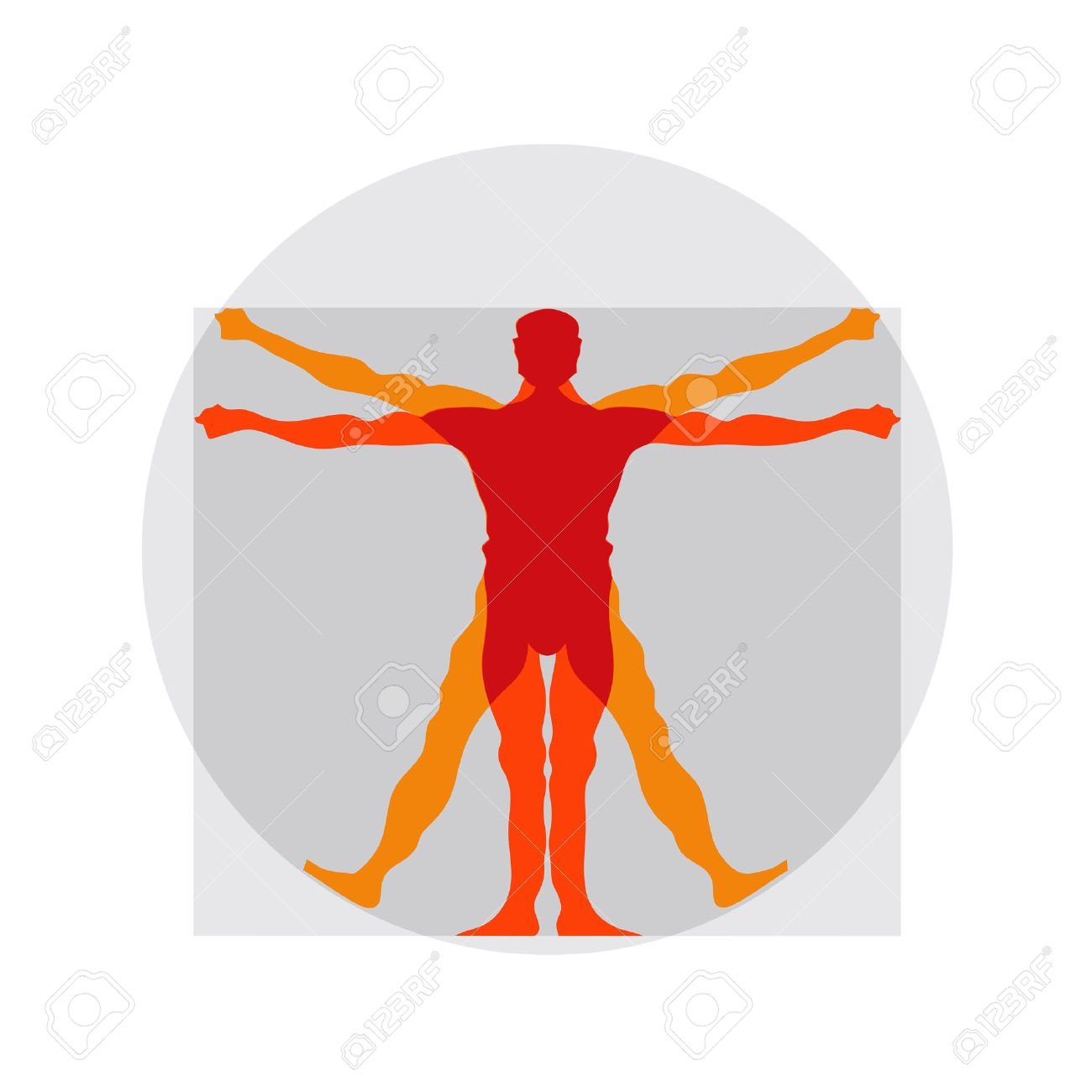 Vetruvian Man Human Anatomy Study By Leonardo Da Vinci Royalty Free