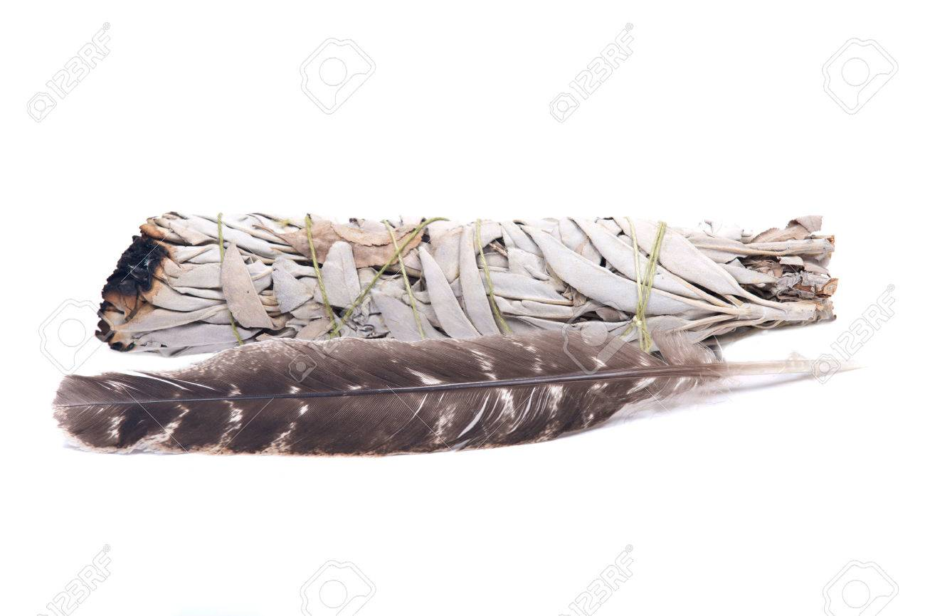 Sage smudge stick with grade A barred turkey smudging feather isolated on white background - 68559231