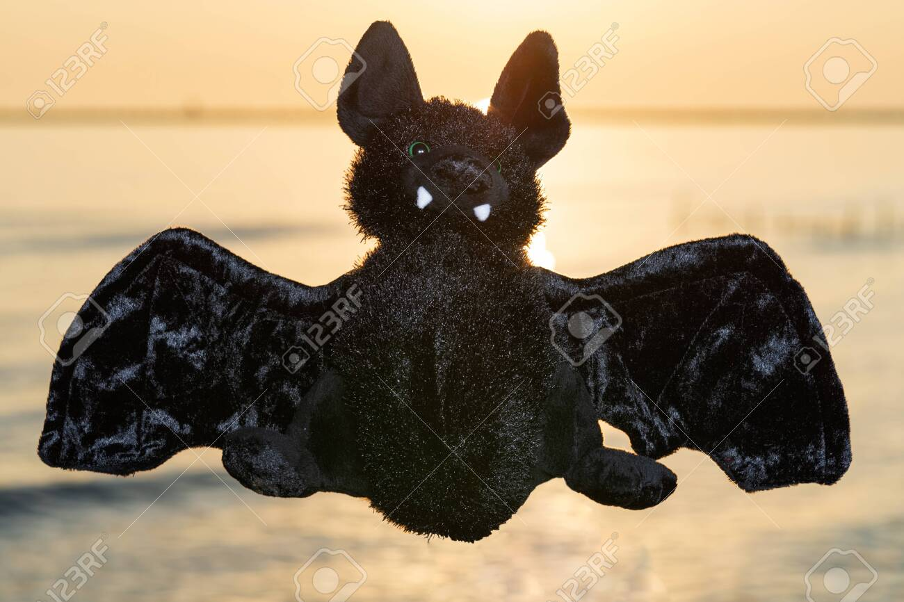 Stuffed funny Black Bat toy at the sunrise in front of the lake. A Symbol of Rebirth. Guardian of the Night. - 128873627