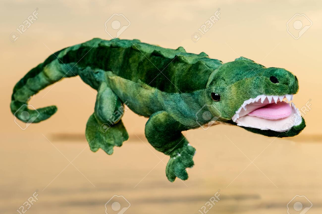 Green soft stuffed toy Crocodile at the sunrise in front of the lake. - 128873639