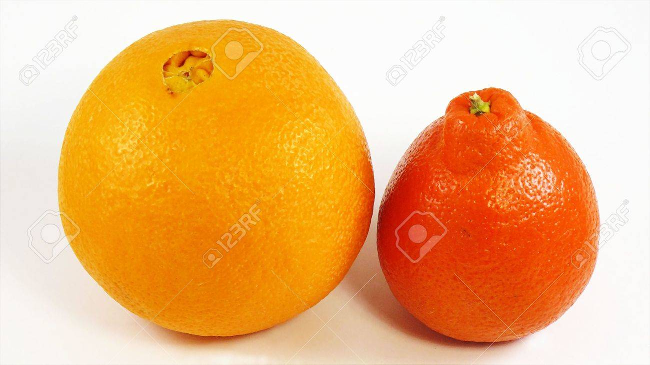 An Orange And A Tangelo Stock Photo, Picture And Royalty Free ...