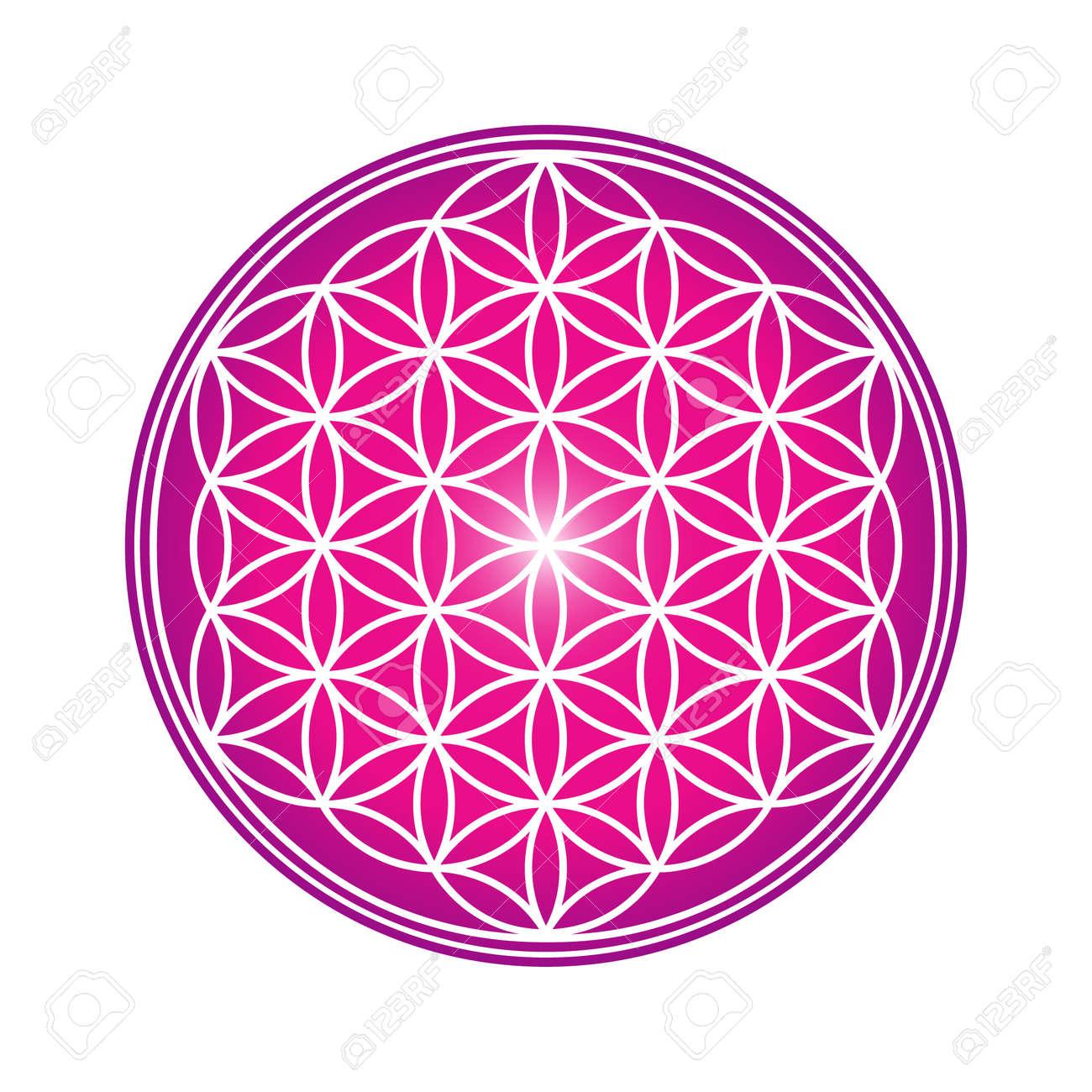 Flower of Life design image, vector illustration. Sacred geometry, symbol of healing and balance. - 155294676
