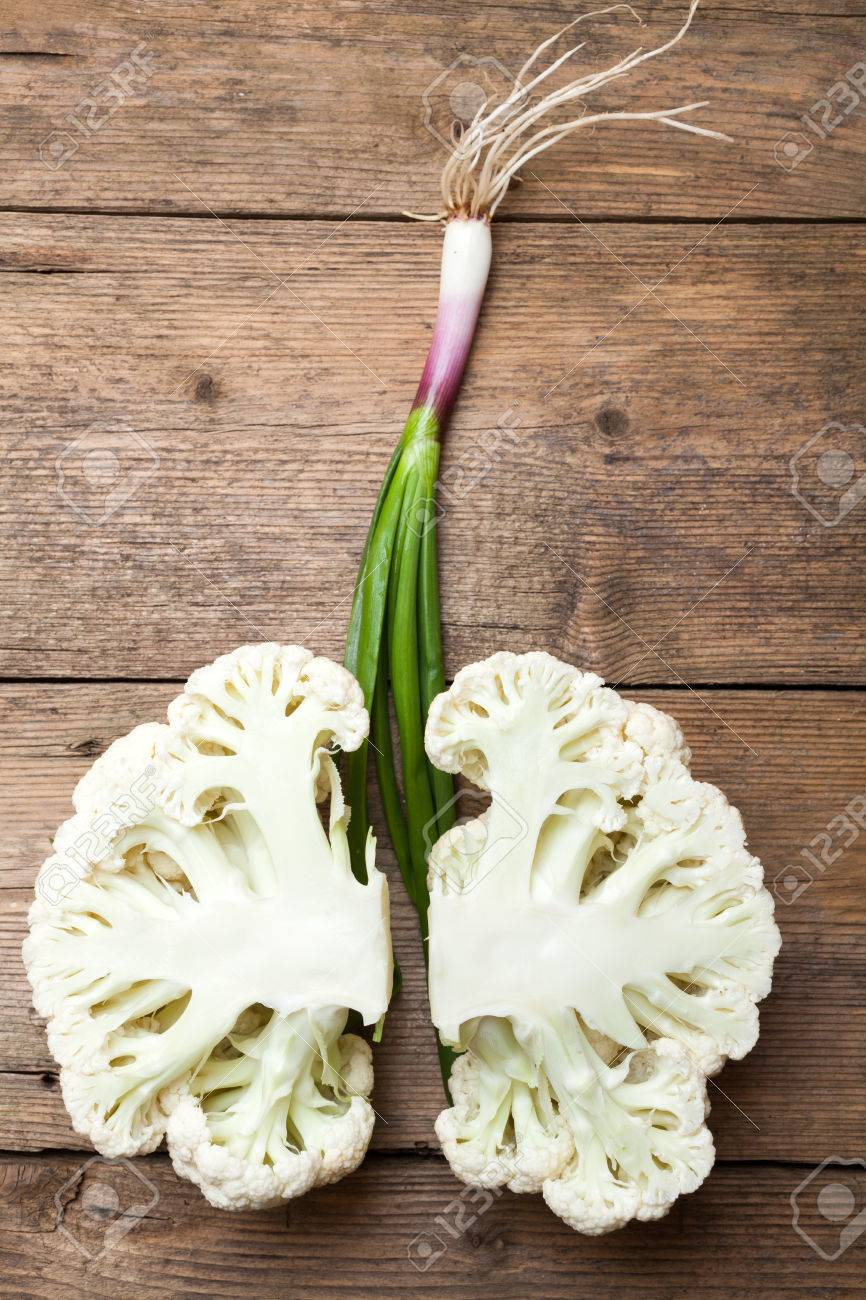 Imitation of healthy lungs formed by cauliflower and spring onion