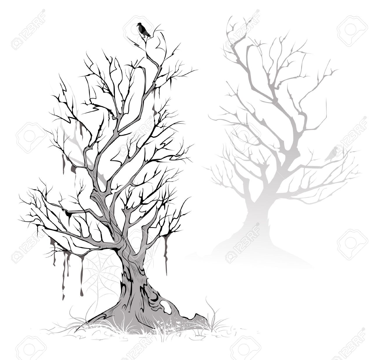 dead trees stock photos royalty free dead trees images and pictures