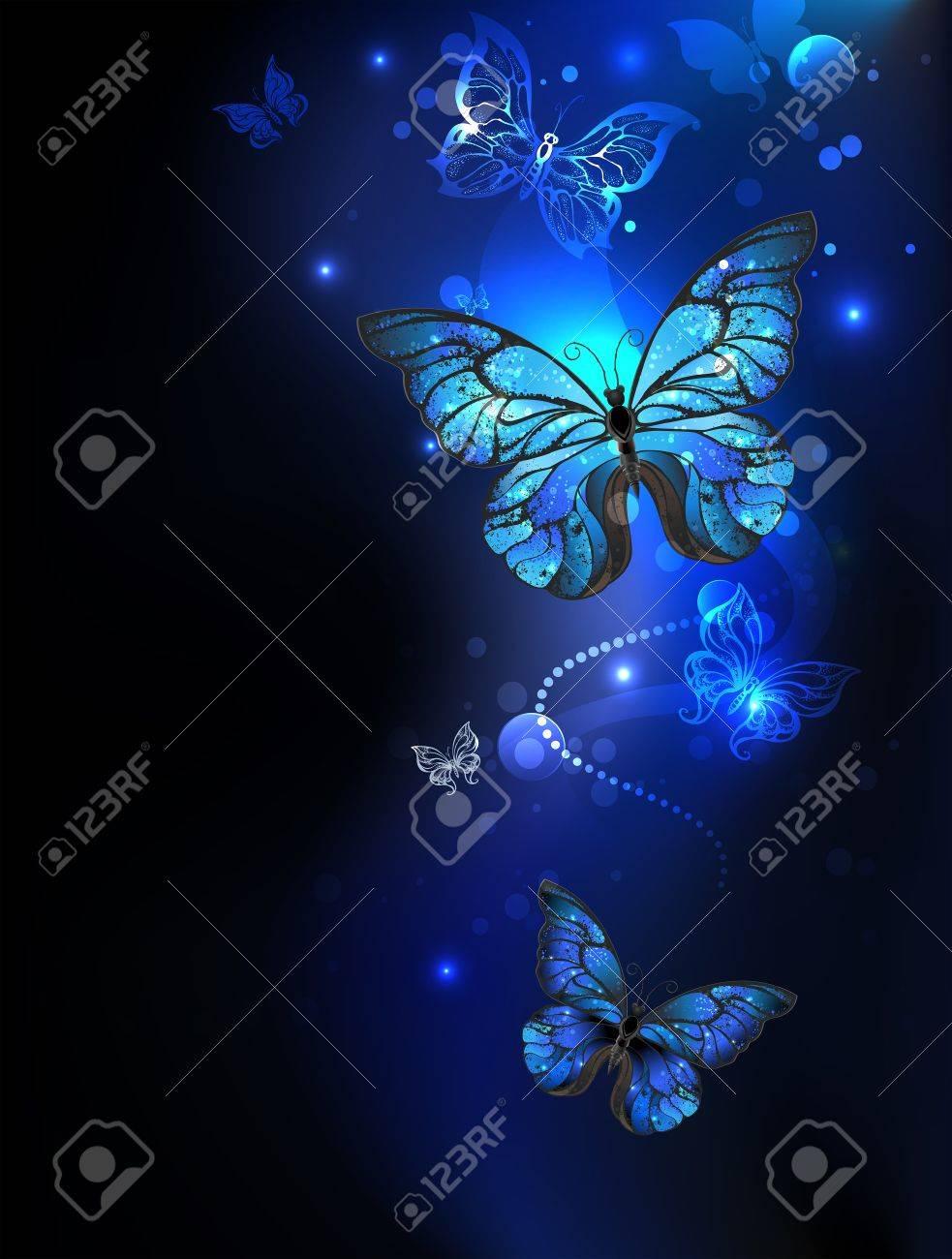 Blue, Glowing Butterflies Morpho On A Dark Background. Morpho ...