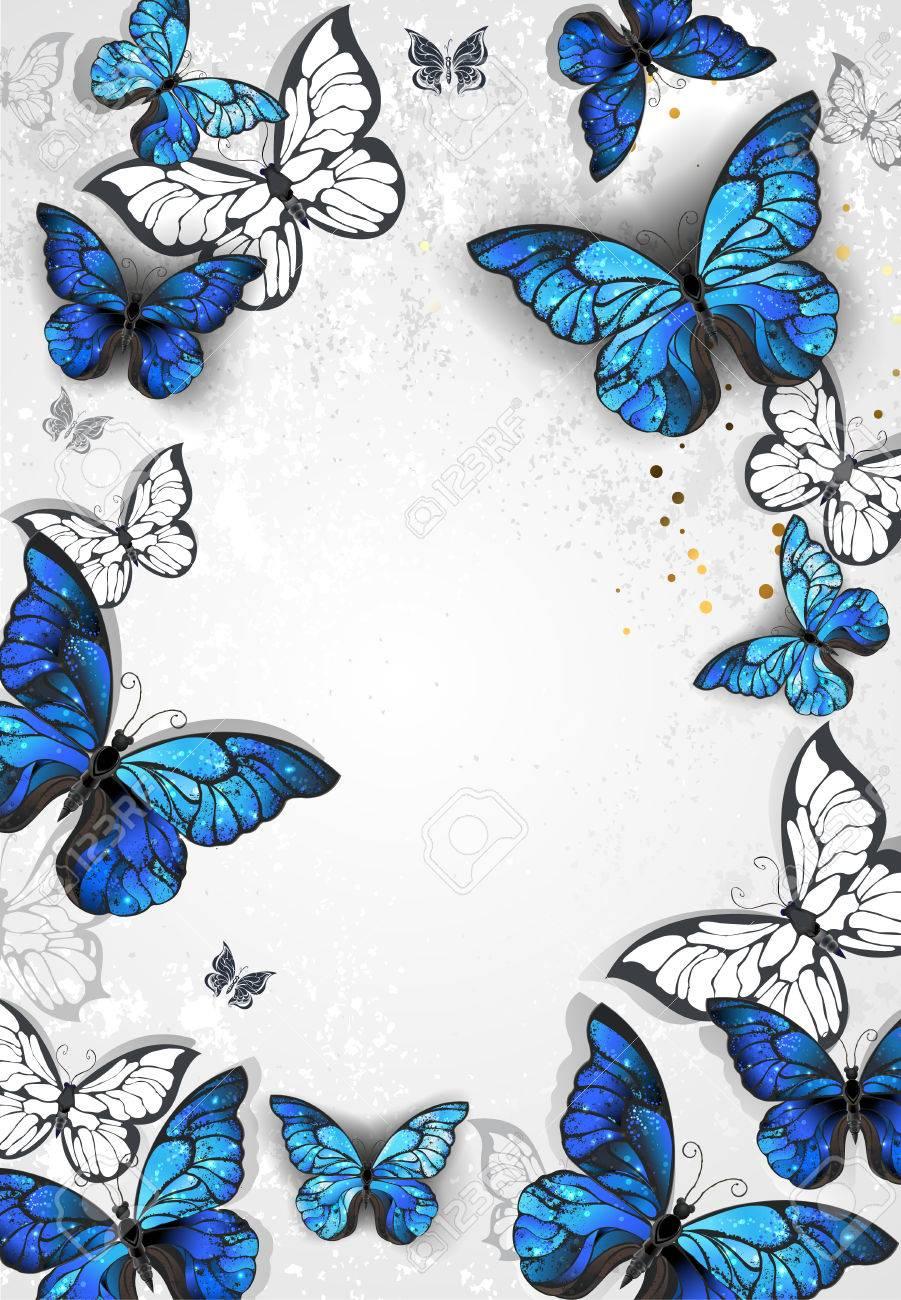 Marco Con Mariposas Morfo Azul Realistas En El Fondo De Textura Gris ...