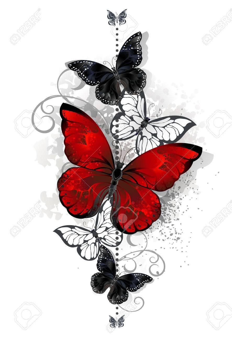 La Composición De Un Brillante Mariposa Mariposas Rojo Y Negro Sobre