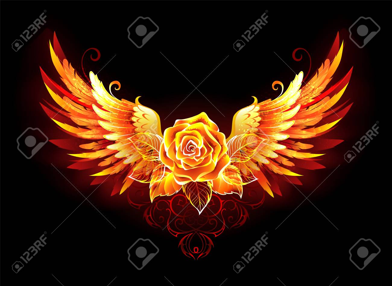Blossoming fire rose with phoenix wings on black background. - 121562914
