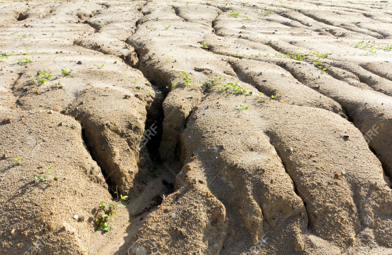 Soil Erosion Soil Erosion To Overgrazing Leading To Desertification Caused By Over Exploitation Stock Photo