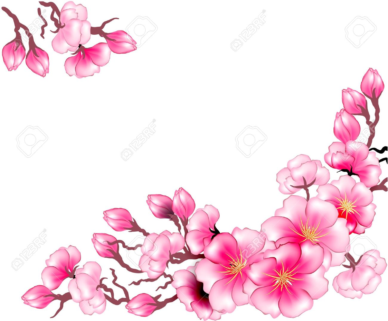 Sakura Branch Flowers Design Template Royalty Free Cliparts ...