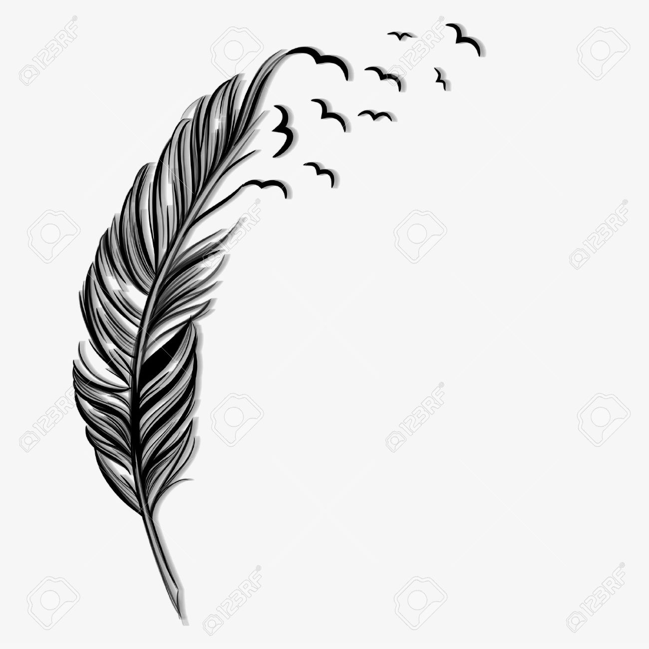 Birds flying ot of a quill - 21020284