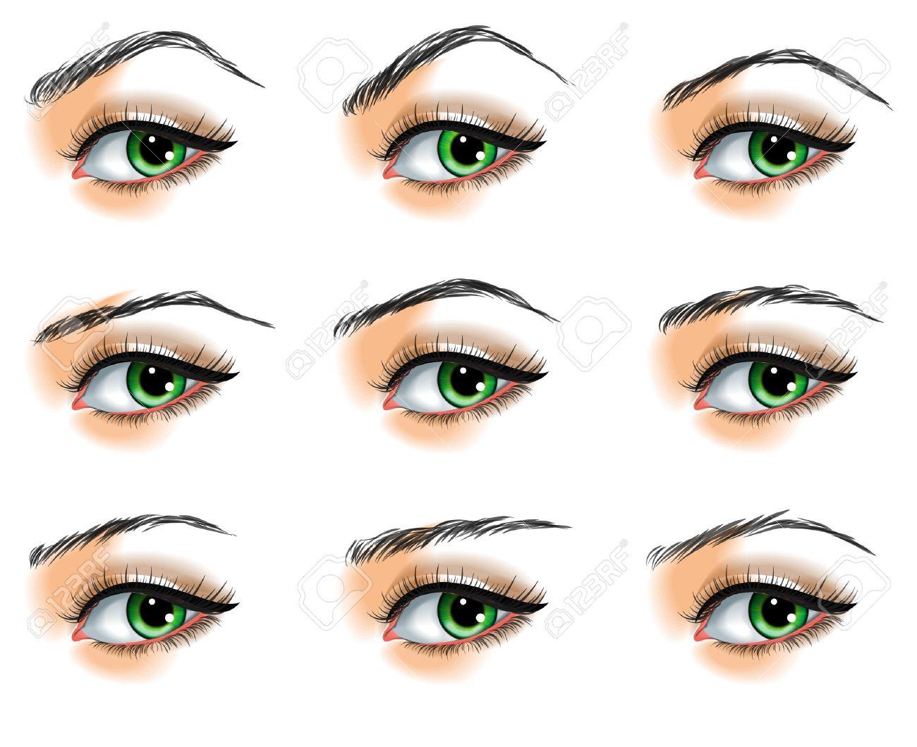 Nine different eyebrows set - 23650955