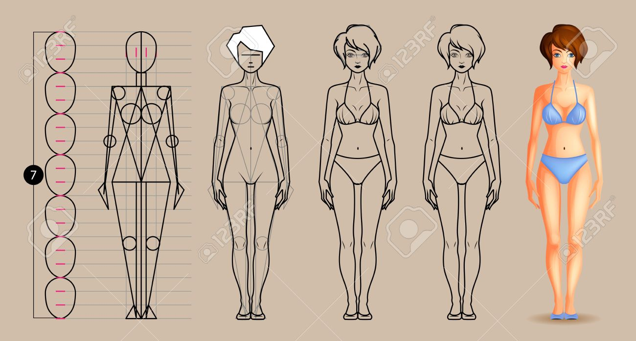 Drawing lesson female body - 51439792