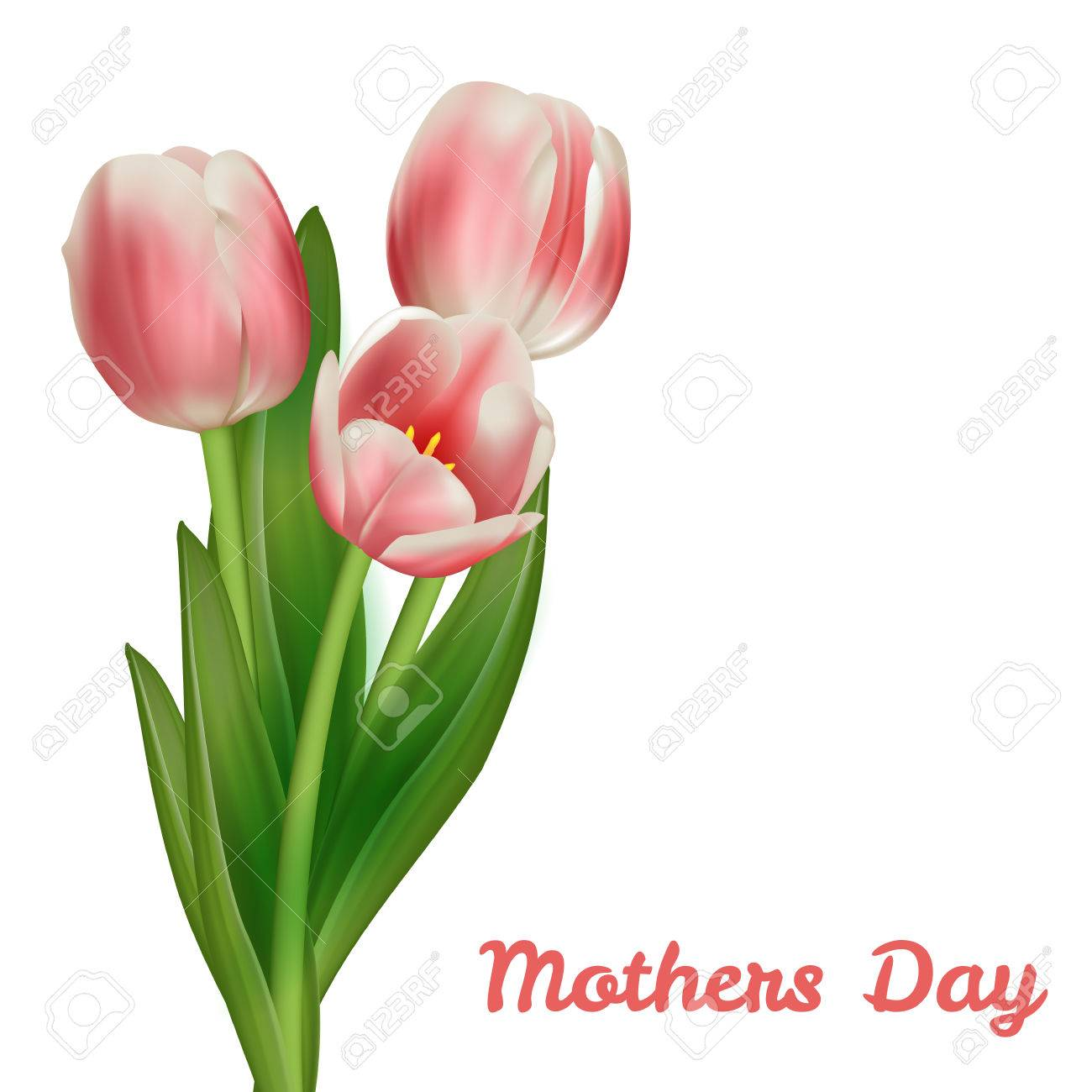 Mothers Day Tulip Bouquet >> Realistic Tulips Bouquet Mother S Day Card Design Template Royalty