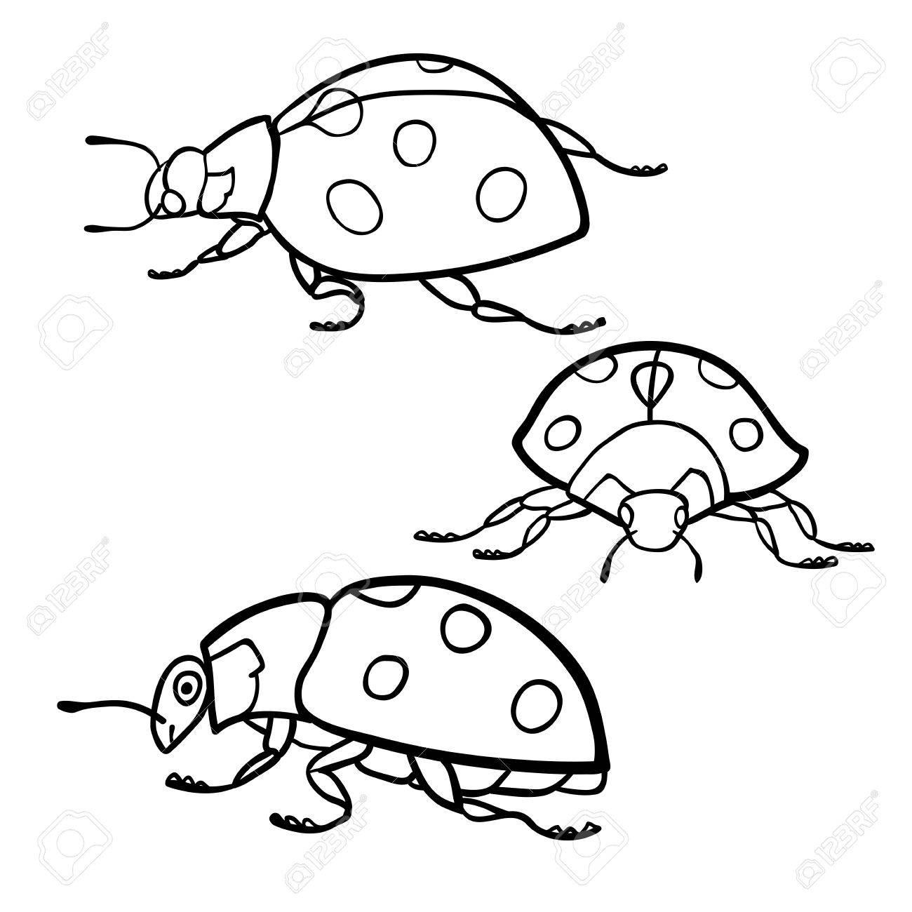 塗り絵 てんとう虫セットのイラスト素材ベクタ Image 56046301
