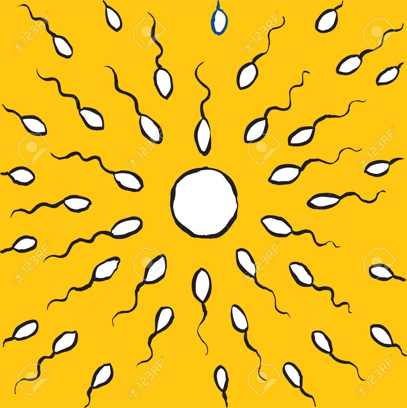 Cartoon sperm cell