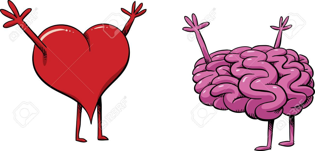 Un Corazón Y Cerebro De Dibujos Animados Ilustraciones Vectoriales