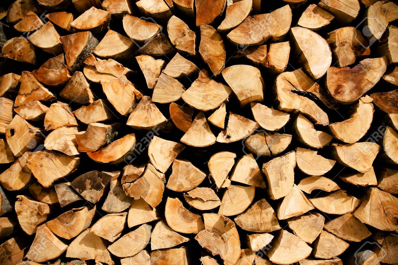 Detail of many cutted trees used in wood industry. Stock Photo - 8075474