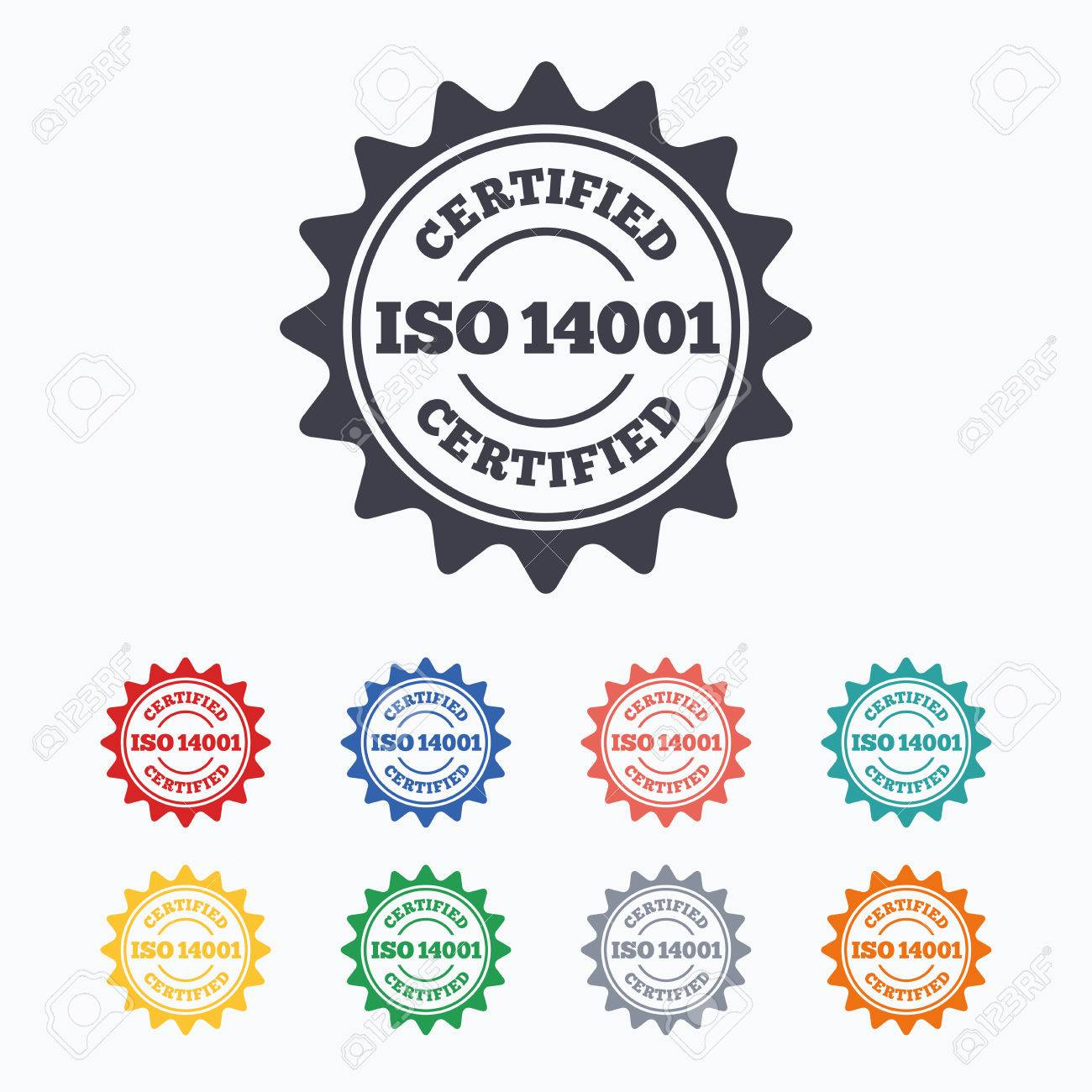 ISO 14001 Certified Sign Icon Certification Star Stamp Colored Flat Icons On White Background