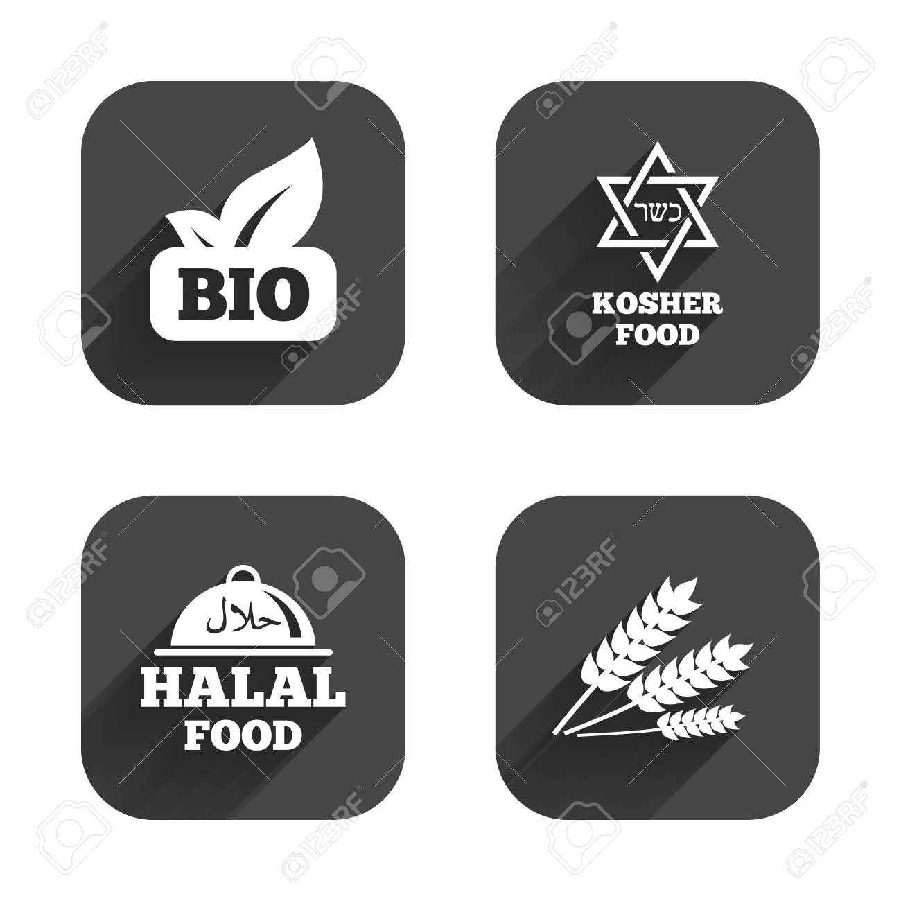 Natural Bio Food Icons Halal And Kosher Signs Gluten Free And