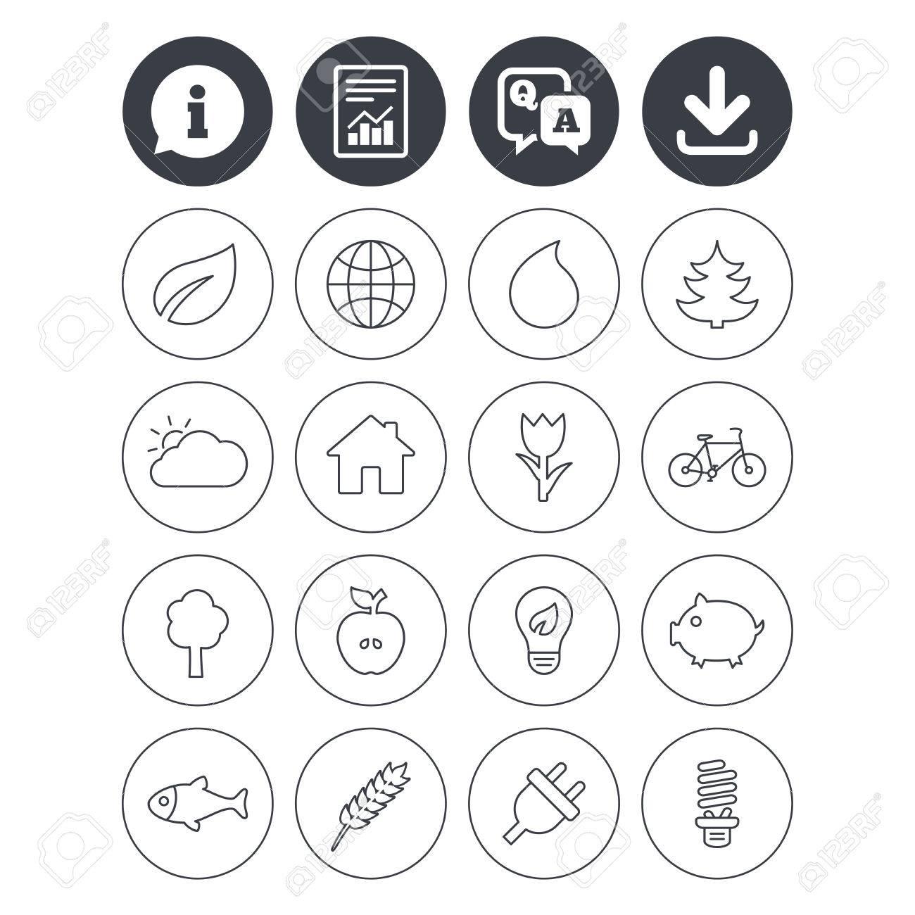 Information Telechargement Et Signalement Des Signes Icones Nature