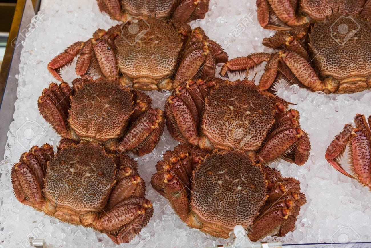 King Crab and seafood sale at Hakodate morning market, Hokkaido