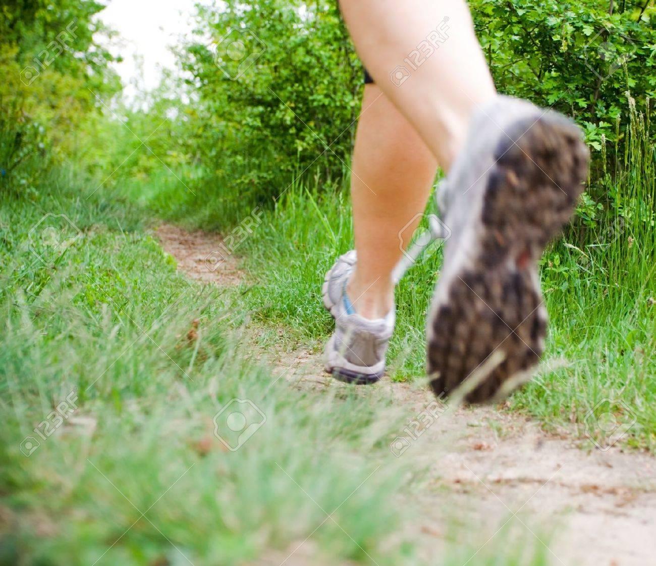 La Sportiva Crosslite Fell Shoes | Northern Runner