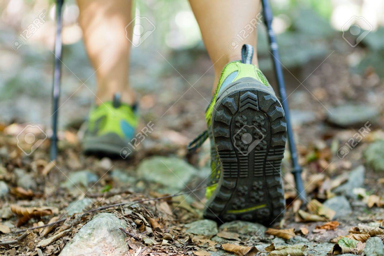 Woman hiking and nordic walking in autumn forest Stock Photo - 11019522
