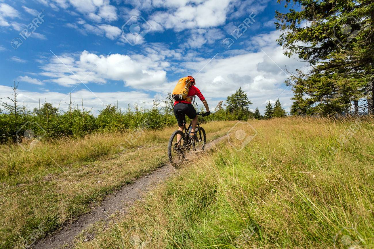 Mountain biker riding on bike in summer inspirational mountains landscape. Man cycling MTB on enduro trail path. Sport fitness motivation and inspiration. Rider mountain biking in summer woods. - 62931471