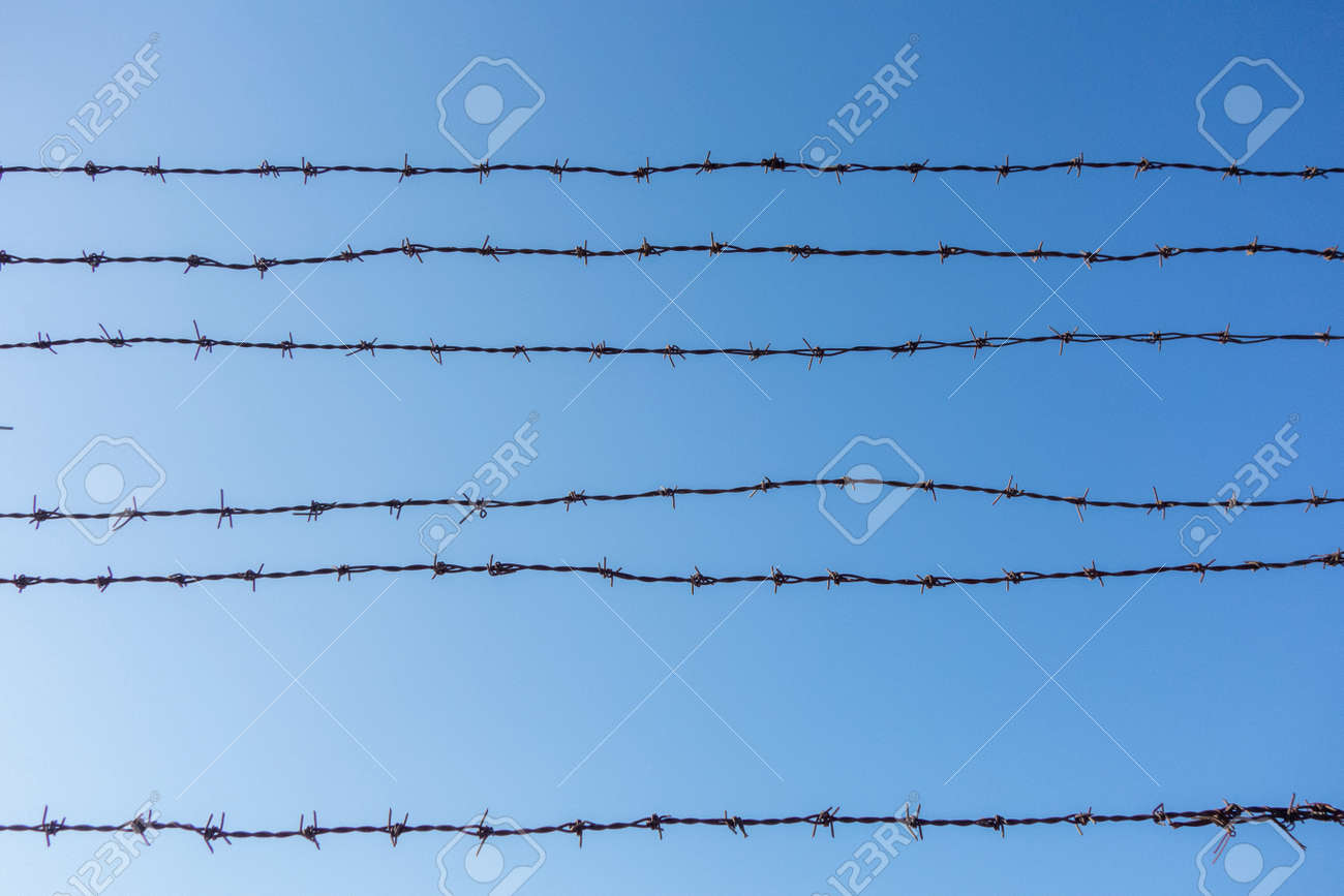 blue sky and barbed wire mesh - 165556714