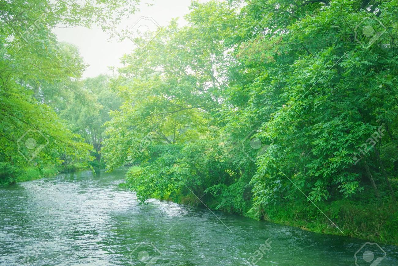 Fog River - 83057675