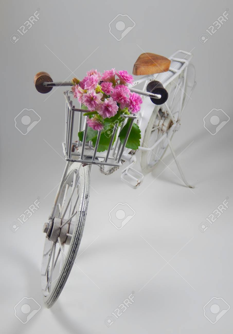 An Old White Bicycle With Basket Contains Beautiful Pink Flowers