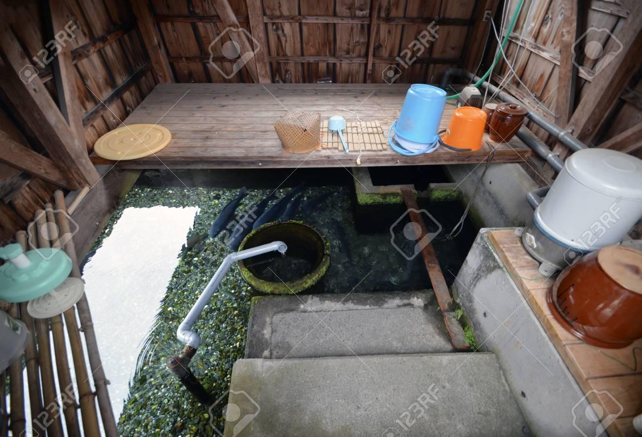 Secret Watergarden Du Japon Dans L Evier Banque D Images Et Photos