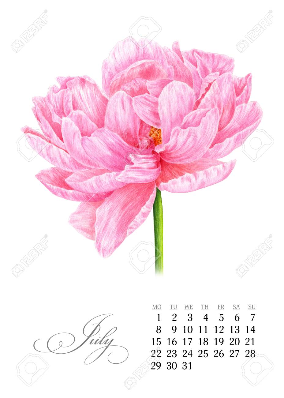 Elegant printable calendar 2019  July  Watercolor pink peony