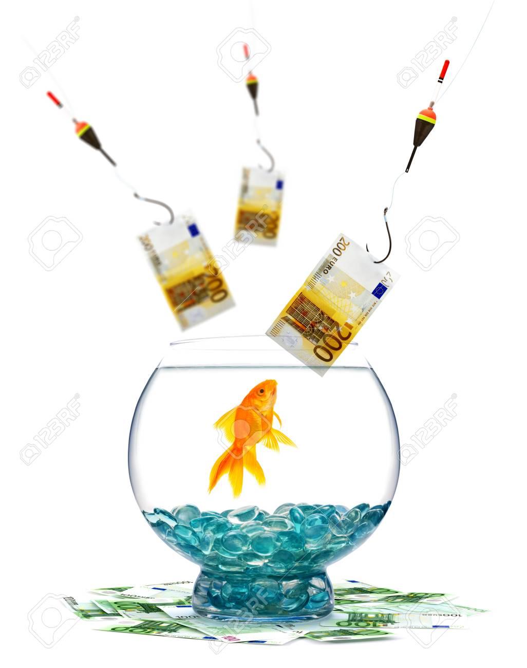 Goldfish in aquarium on white background Stock Photo - 7998310