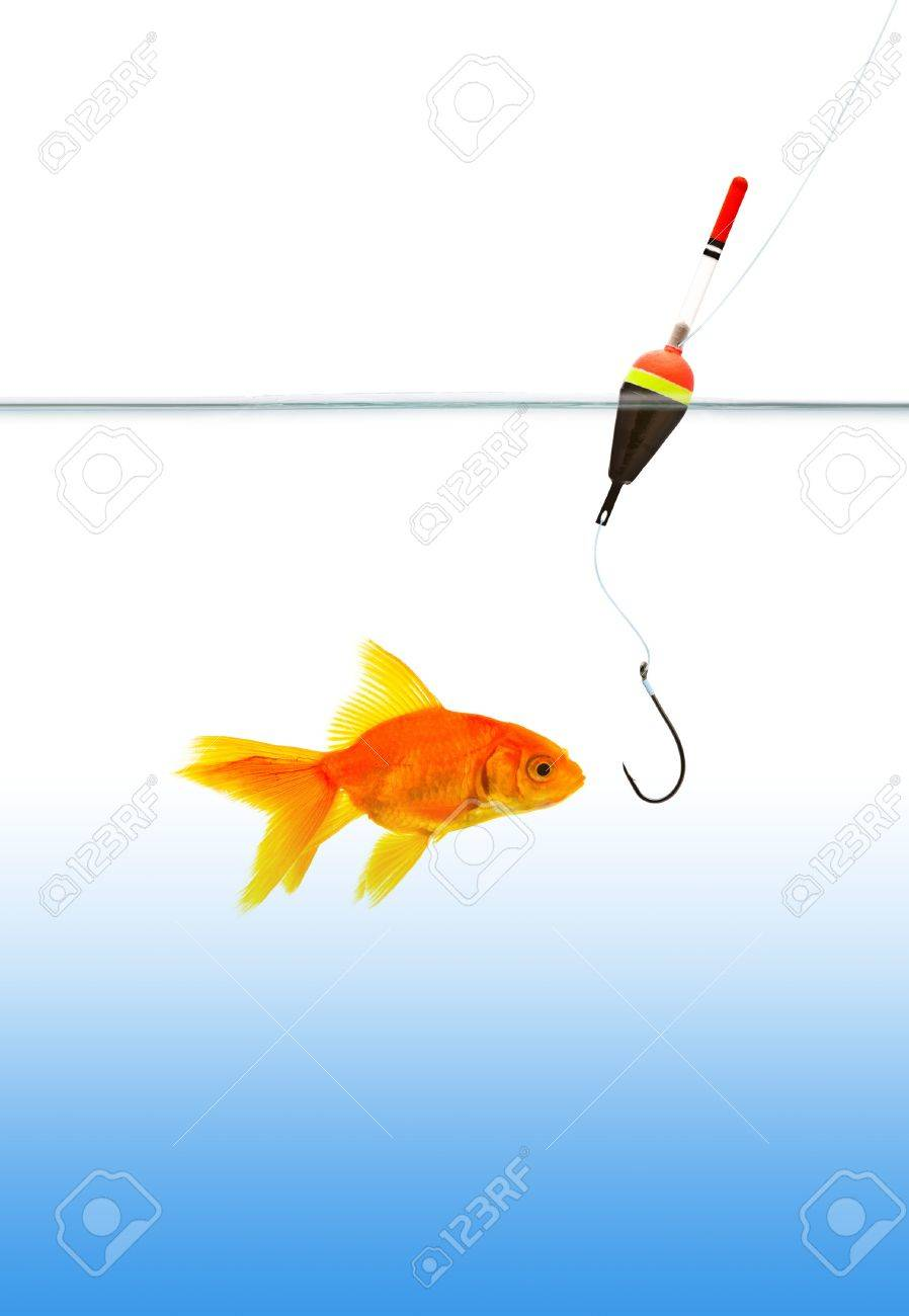 Fishing a goldfish. Shot in a studio Stock Photo - 10655160