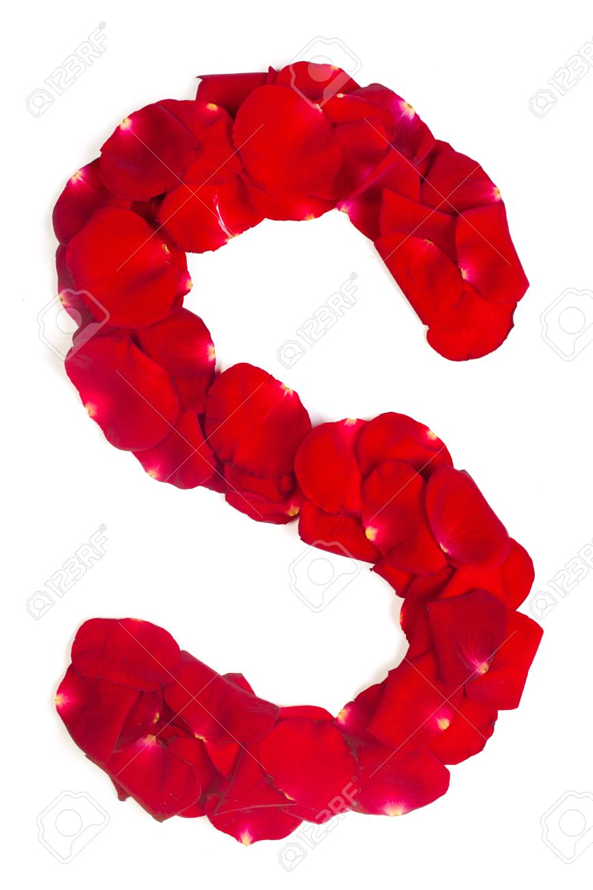 Alphabet letter S made from red petals rose isolated on a white background Stock Photo - 14678514