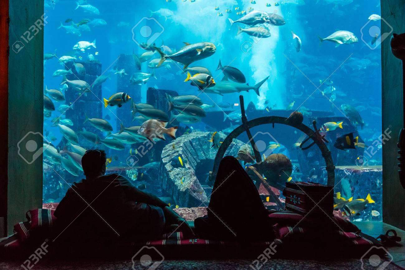 Fish aquarium in uae - Dubai Uae September 30 Large Aquarium In Hotel Atlantis 1 539 Spacious Guest