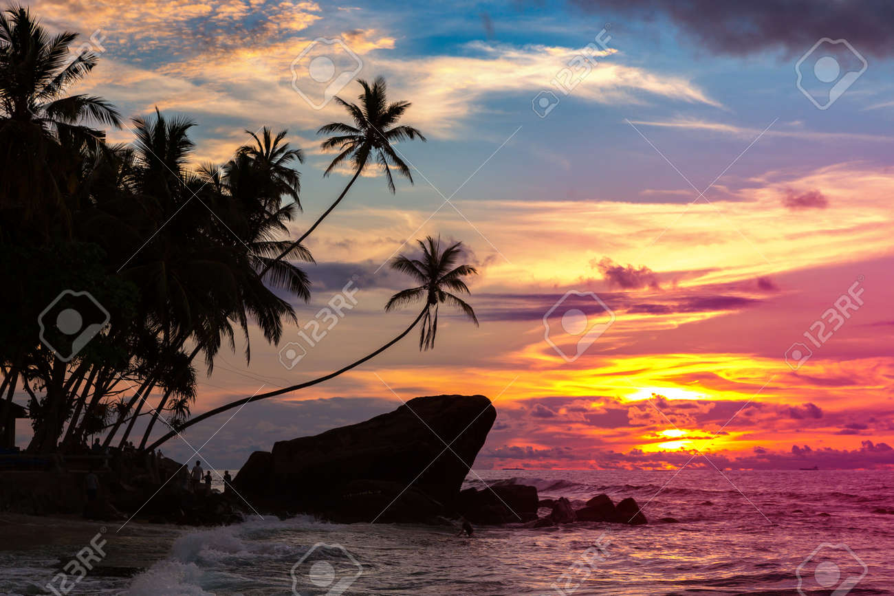 Sunset at Dalawella beach in Sri Lanka - 173329206