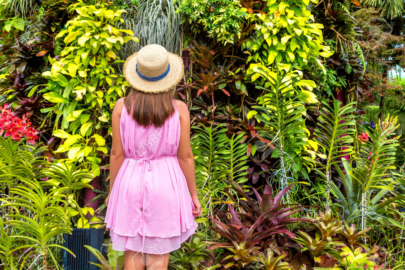 Woman traveler wearing pink dress and straw hat against natural tropical background - 173329310
