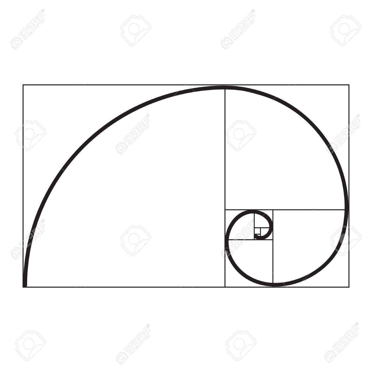 golden ratio spiral - 133387179