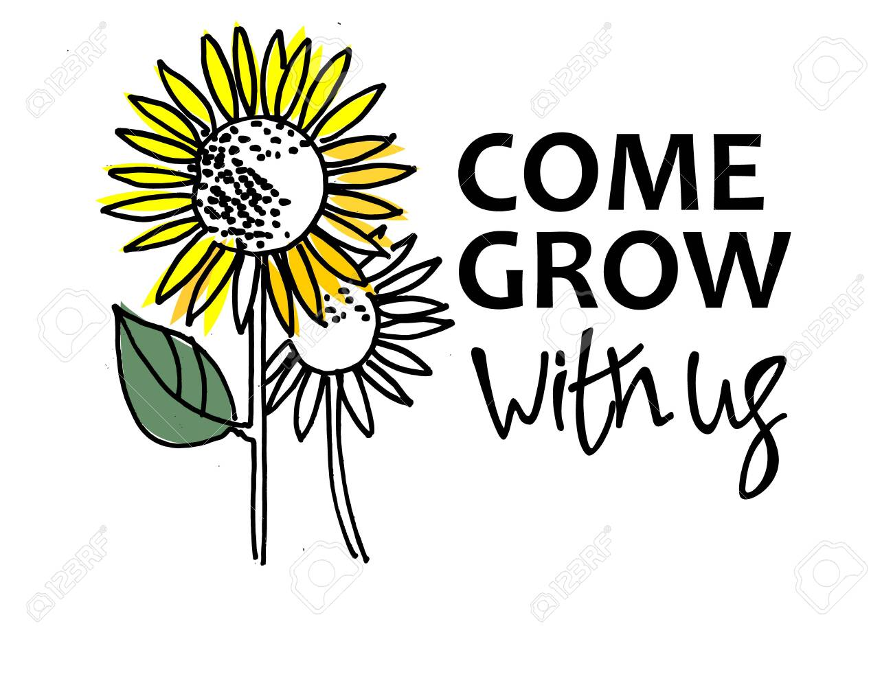 Come grow with us. Recruitment, teambuilding and personal growth concept. Sunflowers, one of them is bigger and colorful. Type and hand lettering on the right. Isolated on white background - 127039385